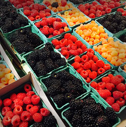 San Luis Obispo fresh local berries and food